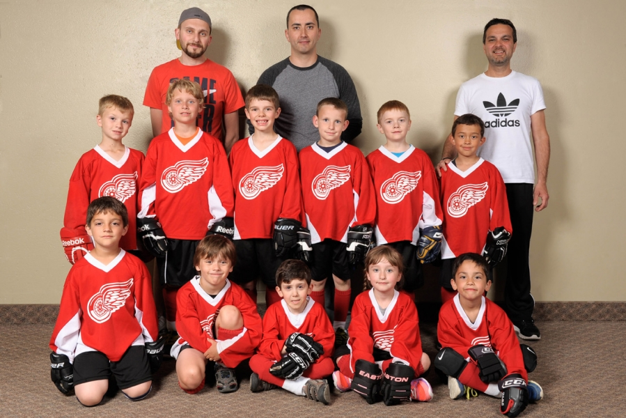 Tyke-Novice - Red Wings